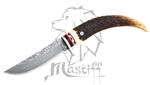 Mastiff Imported Japanese Damascus Steel Fixed Blade Knife W/ Kerry Horn Handle